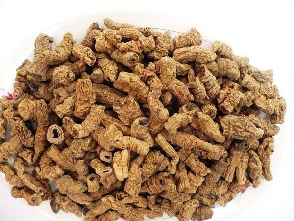 IMC  sản xuất thực phẩm chức năng có nguồn gốc từ thiên nhiên