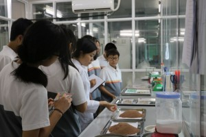 nhà máy sản xuất thực phẩm chức năng 1