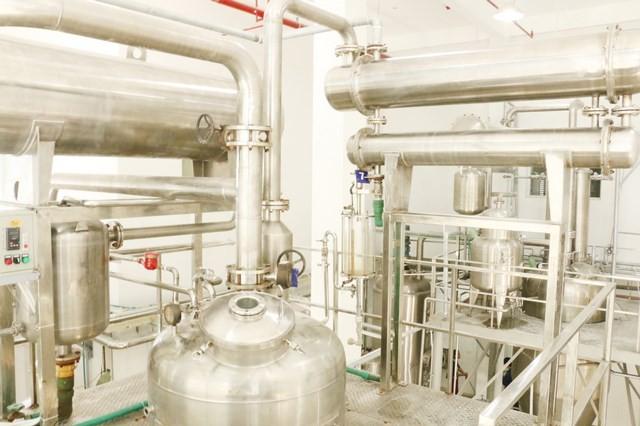 """Nhà máy chiết xuất cao dược liệu của IMC - Tại sao làm việc hết công suất mà khách cứ phải """"chờ đến lượt""""?"""