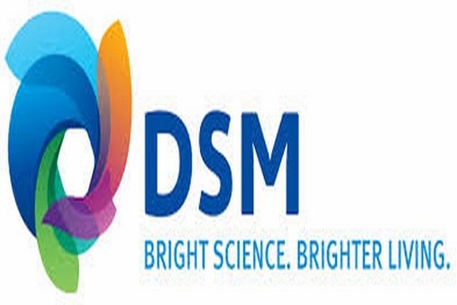 DSM – Netherlands