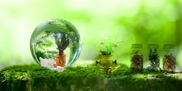 IMC Gia công sản xuất mỹ phẩm ngăn mùi từ thiên nhiên